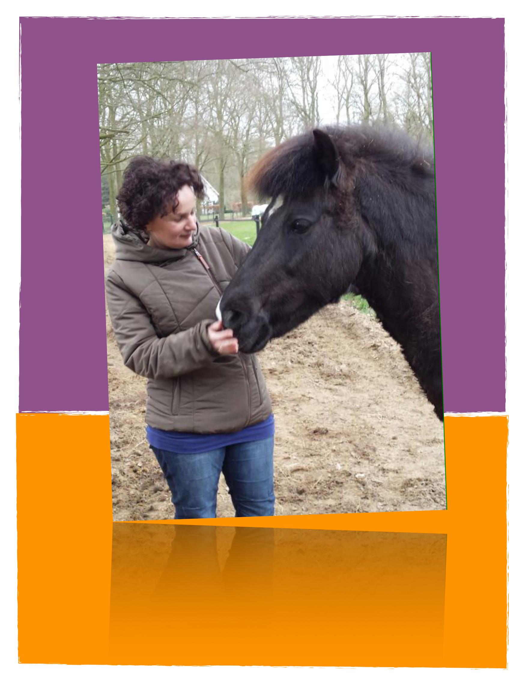 Comedi Coaching tarieven Paardencoaching en Kindercoaching