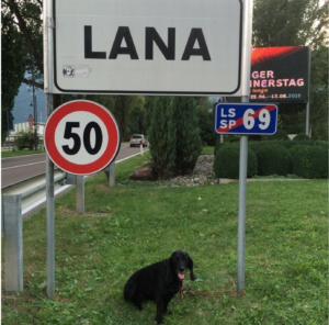 Lana In Lana Italie Simone Kornalijnslijper